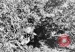 Image of Italian troops Italy, 1943, second 50 stock footage video 65675043456