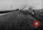 Image of German troops Warsaw Poland, 1943, second 2 stock footage video 65675043478