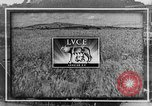 Image of Adolf Hitler Italy Brenner Pass, 1943, second 7 stock footage video 65675043482