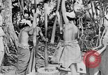 Image of Wonders of the World Bali Indonesia, 1937, second 29 stock footage video 65675043500