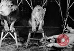 Image of Big Police Circus Rochester Indiana USA, 1938, second 13 stock footage video 65675043531
