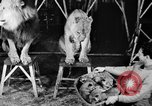 Image of Big Police Circus Rochester Indiana USA, 1938, second 15 stock footage video 65675043531