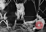 Image of Big Police Circus Rochester Indiana USA, 1938, second 23 stock footage video 65675043531