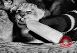 Image of Big Police Circus Rochester Indiana USA, 1938, second 28 stock footage video 65675043531