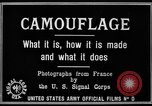 Image of World War I Camouflage France, 1918, second 16 stock footage video 65675043544