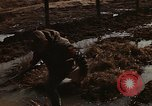 Image of 7th Infantry Division soldiers Korea, 1968, second 35 stock footage video 65675043559