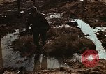 Image of 7th Infantry Division soldiers Korea, 1968, second 40 stock footage video 65675043559