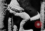 Image of Temples Cambodia, 1945, second 48 stock footage video 65675043572