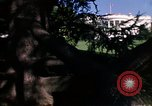 Image of Monuments Washington DC USA, 1968, second 61 stock footage video 65675043626