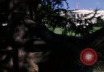 Image of Monuments Washington DC USA, 1968, second 62 stock footage video 65675043626