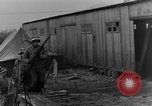 Image of execution of German spies Belgium, 1944, second 5 stock footage video 65675044510