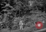 Image of forest Caracas Venezuela, 1940, second 22 stock footage video 65675050630