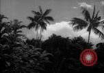 Image of forest Caracas Venezuela, 1940, second 12 stock footage video 65675050633
