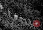 Image of forest Caracas Venezuela, 1940, second 20 stock footage video 65675050633
