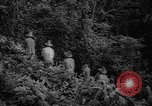 Image of forest Caracas Venezuela, 1940, second 26 stock footage video 65675050633