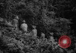 Image of forest Caracas Venezuela, 1940, second 27 stock footage video 65675050633