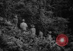 Image of forest Caracas Venezuela, 1940, second 28 stock footage video 65675050633