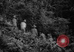 Image of forest Caracas Venezuela, 1940, second 31 stock footage video 65675050633