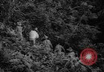 Image of forest Caracas Venezuela, 1940, second 33 stock footage video 65675050633