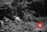 Image of forest Caracas Venezuela, 1940, second 44 stock footage video 65675050633