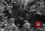 Image of forest Caracas Venezuela, 1940, second 53 stock footage video 65675050633
