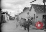 Image of Mules for transportation Caracas Venezuela, 1940, second 17 stock footage video 65675050640