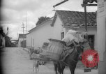 Image of Mules for transportation Caracas Venezuela, 1940, second 19 stock footage video 65675050640