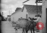 Image of Mules for transportation Caracas Venezuela, 1940, second 22 stock footage video 65675050640