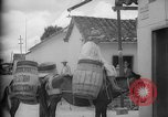 Image of Mules for transportation Caracas Venezuela, 1940, second 24 stock footage video 65675050640