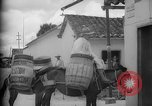 Image of Mules for transportation Caracas Venezuela, 1940, second 25 stock footage video 65675050640