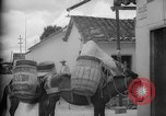 Image of Mules for transportation Caracas Venezuela, 1940, second 26 stock footage video 65675050640