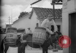Image of Mules for transportation Caracas Venezuela, 1940, second 27 stock footage video 65675050640