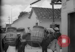 Image of Mules for transportation Caracas Venezuela, 1940, second 28 stock footage video 65675050640