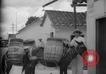 Image of Mules for transportation Caracas Venezuela, 1940, second 29 stock footage video 65675050640
