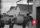 Image of Mules for transportation Caracas Venezuela, 1940, second 30 stock footage video 65675050640