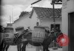 Image of Mules for transportation Caracas Venezuela, 1940, second 32 stock footage video 65675050640