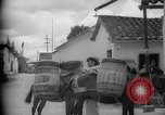 Image of Mules for transportation Caracas Venezuela, 1940, second 34 stock footage video 65675050640
