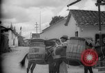 Image of Mules for transportation Caracas Venezuela, 1940, second 35 stock footage video 65675050640