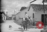 Image of Mules for transportation Caracas Venezuela, 1940, second 37 stock footage video 65675050640