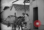 Image of Mules for transportation Caracas Venezuela, 1940, second 43 stock footage video 65675050640