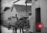 Image of Mules for transportation Caracas Venezuela, 1940, second 44 stock footage video 65675050640
