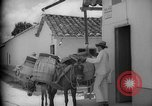 Image of Mules for transportation Caracas Venezuela, 1940, second 45 stock footage video 65675050640