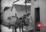 Image of Mules for transportation Caracas Venezuela, 1940, second 46 stock footage video 65675050640
