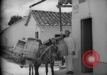 Image of Mules for transportation Caracas Venezuela, 1940, second 47 stock footage video 65675050640