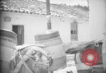 Image of Mules for transportation Caracas Venezuela, 1940, second 49 stock footage video 65675050640