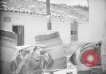 Image of Mules for transportation Caracas Venezuela, 1940, second 50 stock footage video 65675050640