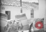 Image of Mules for transportation Caracas Venezuela, 1940, second 51 stock footage video 65675050640