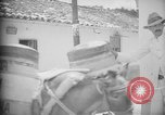 Image of Mules for transportation Caracas Venezuela, 1940, second 53 stock footage video 65675050640