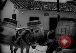 Image of Mules for transportation Caracas Venezuela, 1940, second 55 stock footage video 65675050640