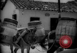 Image of Mules for transportation Caracas Venezuela, 1940, second 56 stock footage video 65675050640